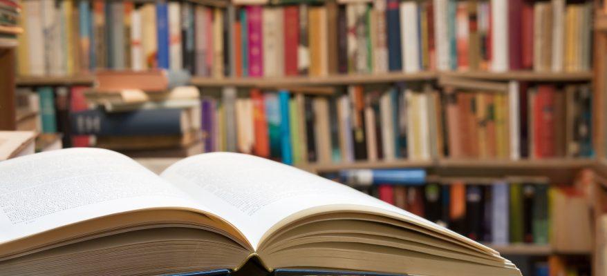 laurea triennale in lettere materie letterarie e umanistiche